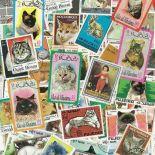 Gestempelte Briefmarkenensammlung Katzen
