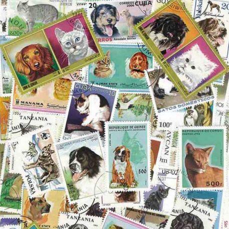 Katzen und Hunde: 100 verschiedene Briefmarken