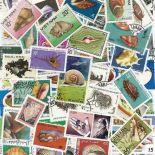 Collezione di francobolli conchiglie cancellate