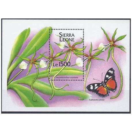 Timbres orchidees Sierra Leone bloc N° 247 neuf