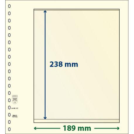 Paquet de 10 feuilles neutres Lindner-T 1 bande 238 mm