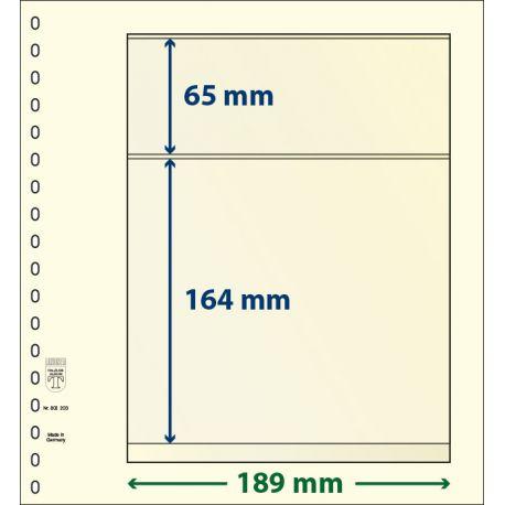 Paquet de 10 feuilles neutres Lindner-T 2 bandes 164 mm et 65 mm