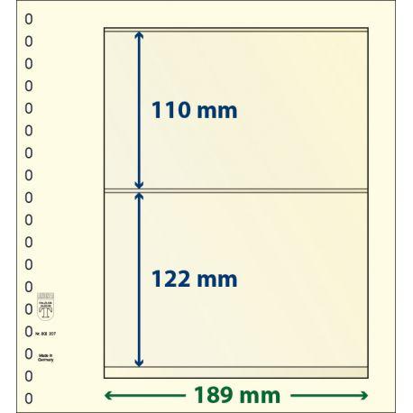 Paquet de 10 feuilles neutres Lindner-T 2 bandes 122 mm et 110 mm