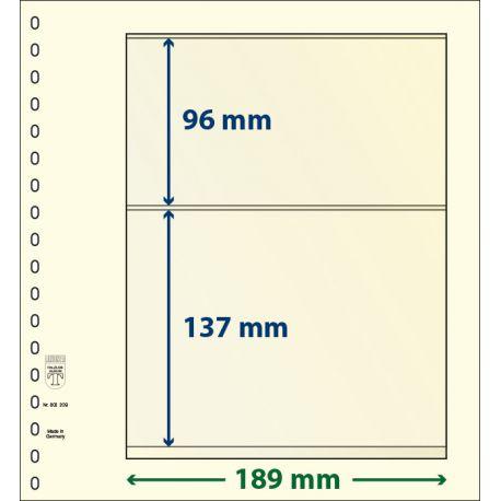 Paquet de 10 feuilles neutres Lindner-T 2 bandes 137 mm et 96 mm