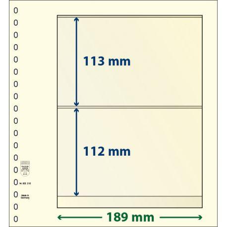 Paquet de 10 feuilles neutres Lindner-T 2 bandes 112 mm et 113 mm