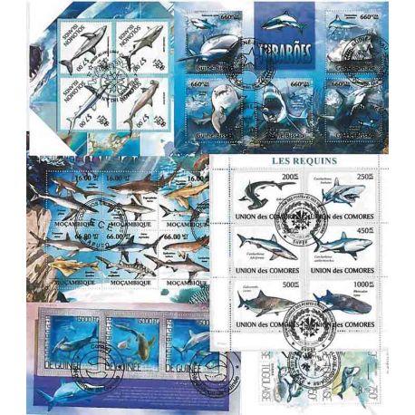 25 requins